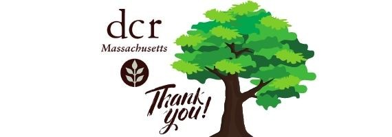 """An image of DCR's logo, a tree, and letters spelling out """"Thank you""""."""